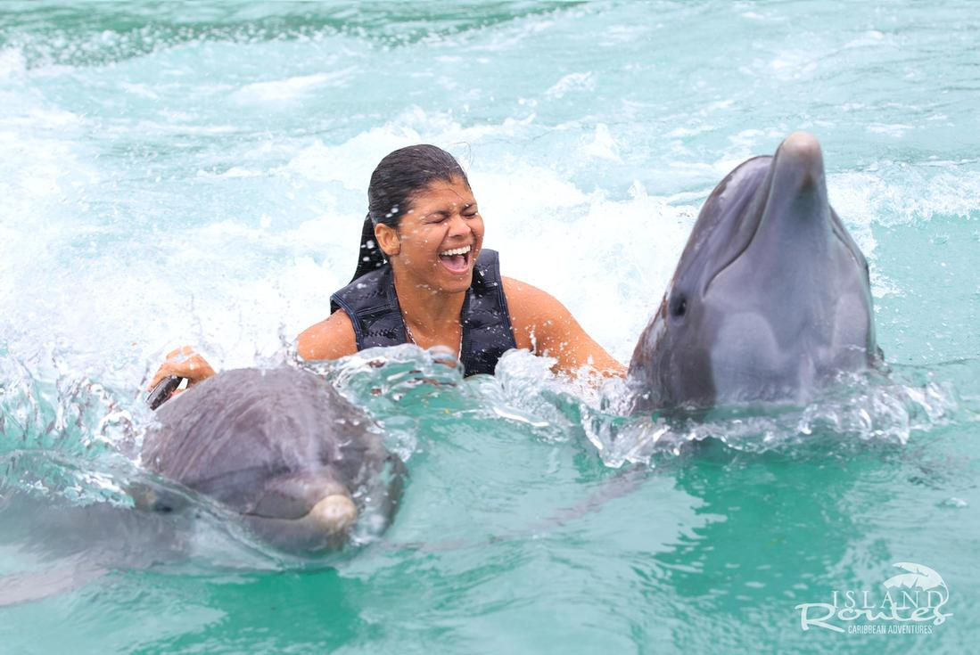 swim with the dolphins in jamaica
