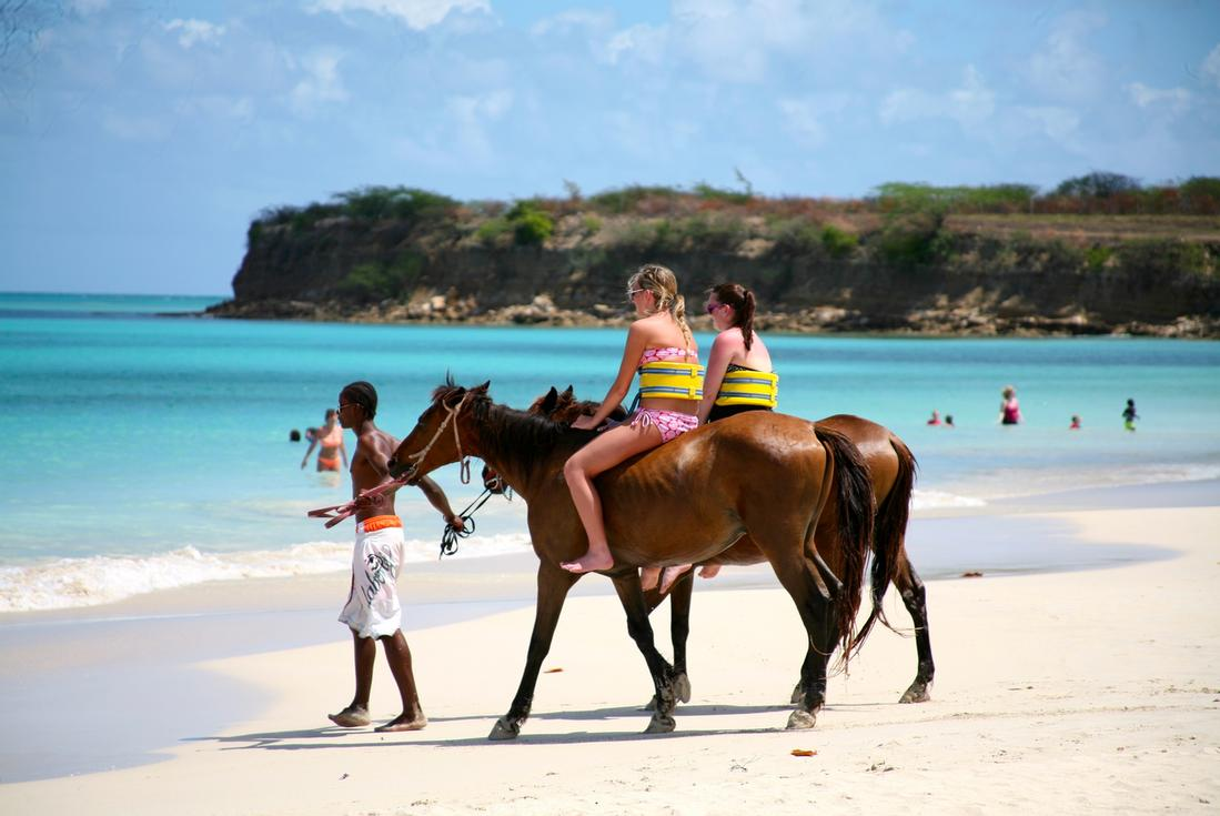 horseback riding in antigua