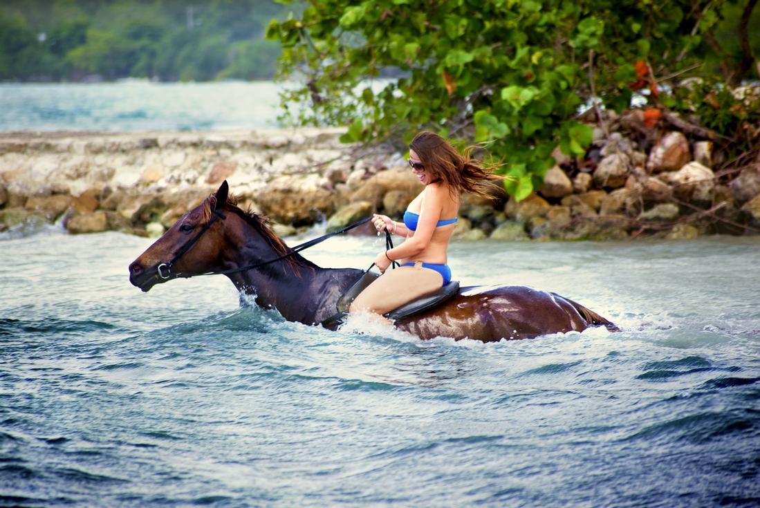 horseback in jamaica