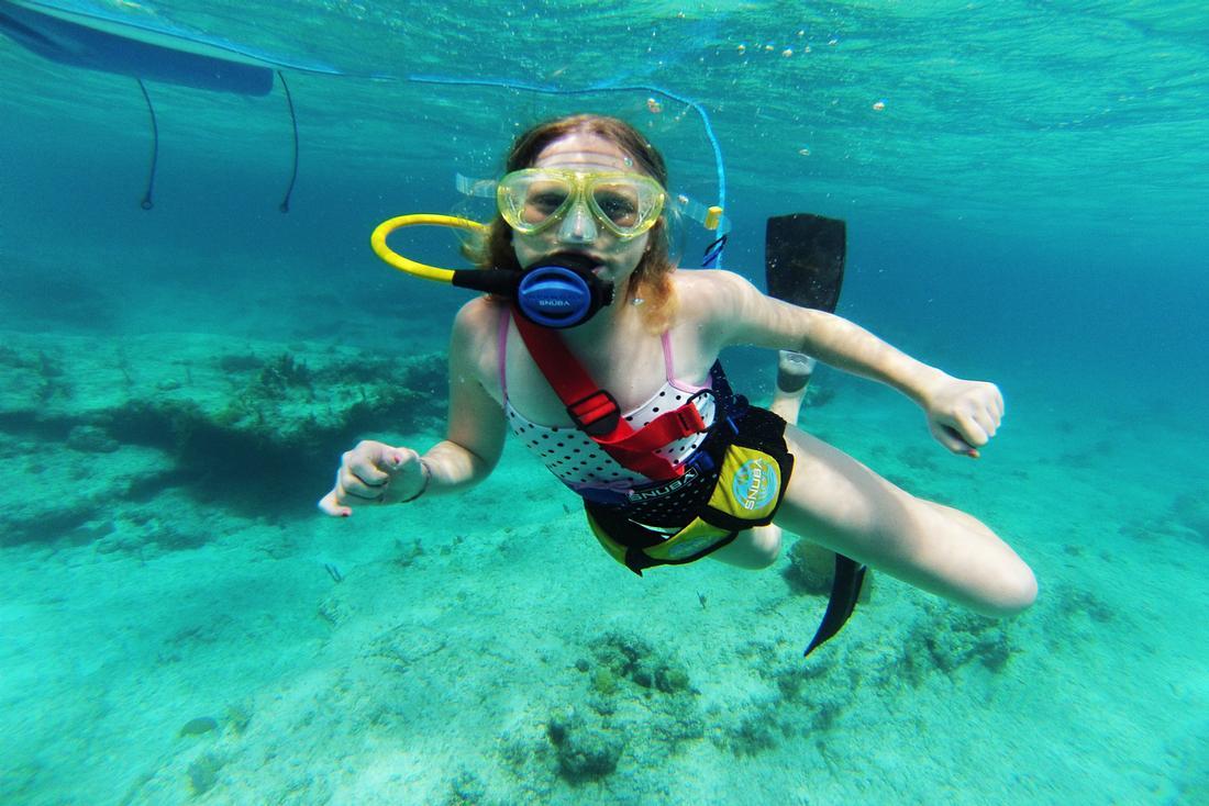 Underwater Ecosystem Long Island Bahamas