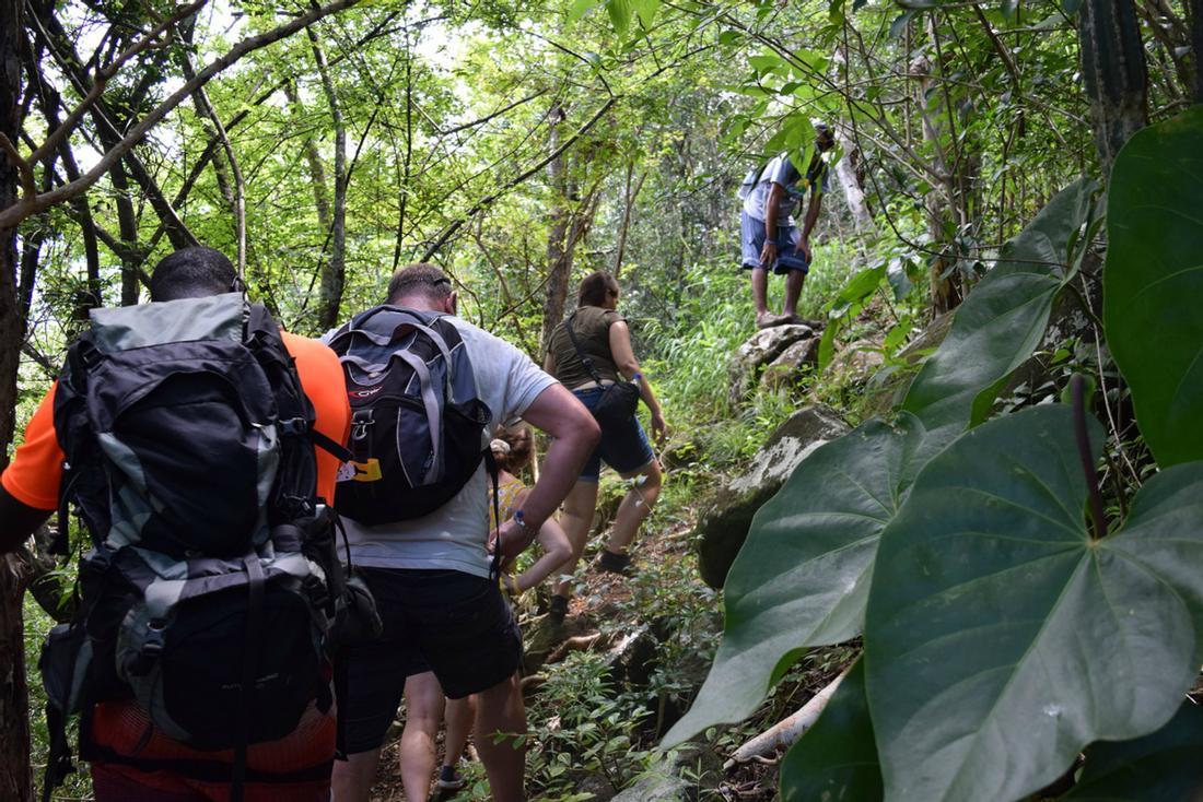 Mt. Pimard Hike St. Lucia