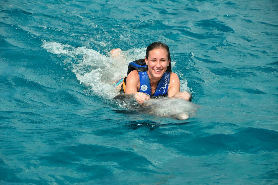 Dolphin Swim Cayman Islands