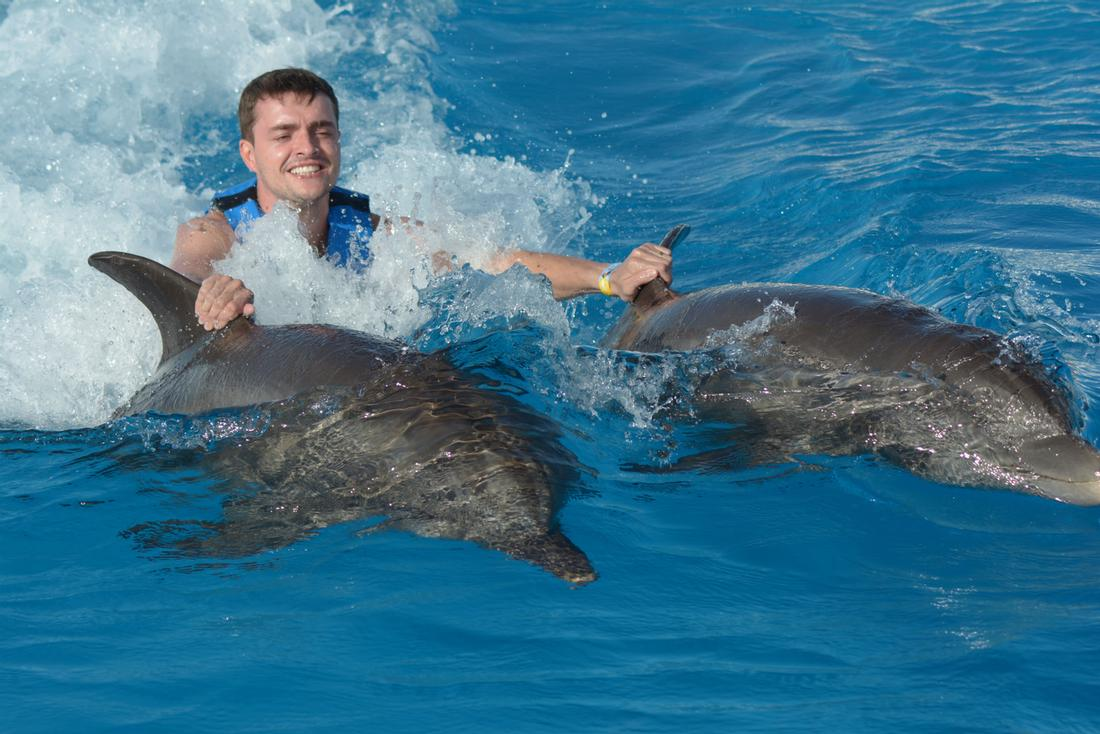 Dolphin Swim Grand Cayman