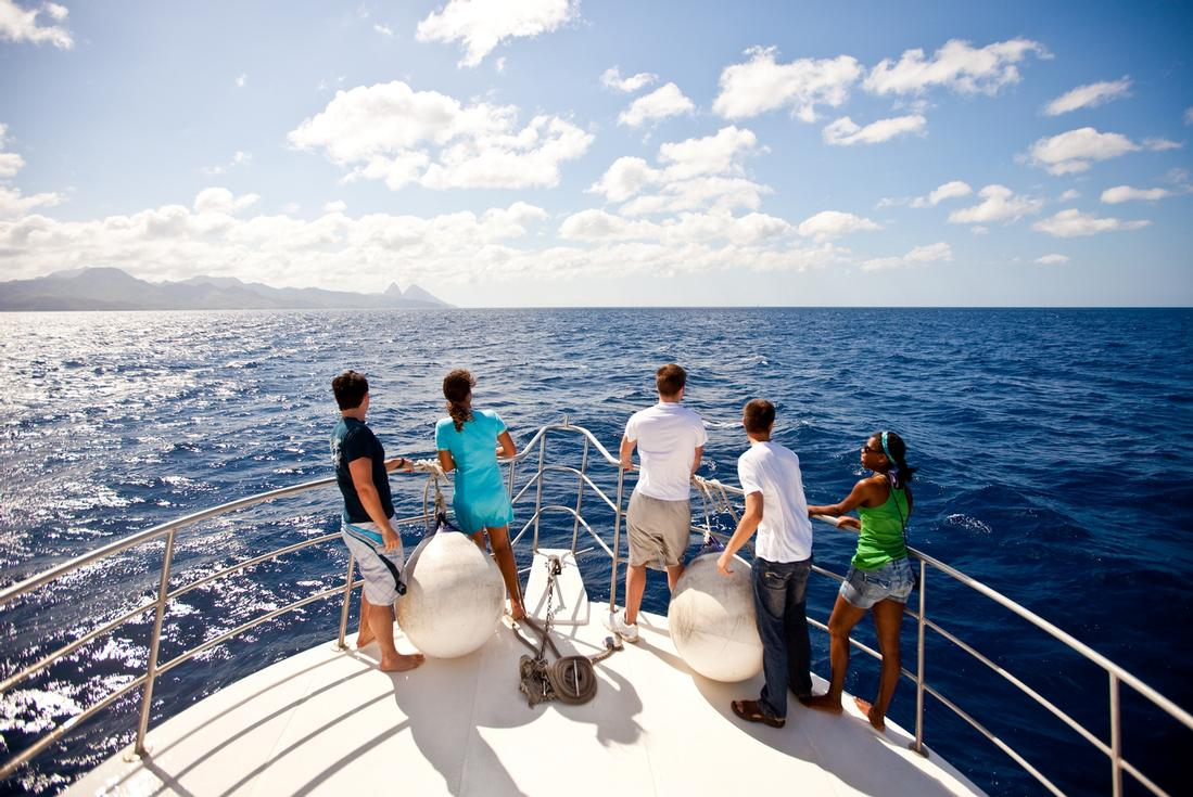 Whale Watching St.Lucia
