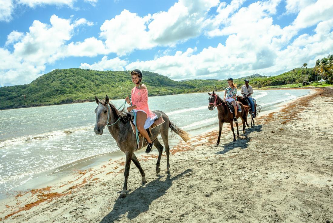 St Lucia Horseback Riding