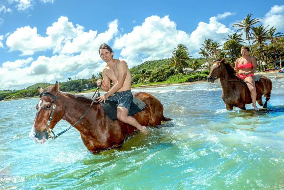 st lucia horseback riding island routes