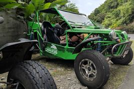 St. Lucia buggies