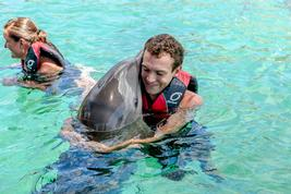 swim with dolphins nassau