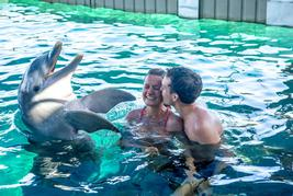 dolphin encounter nassau