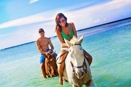 sunset horseback swim in jamaica