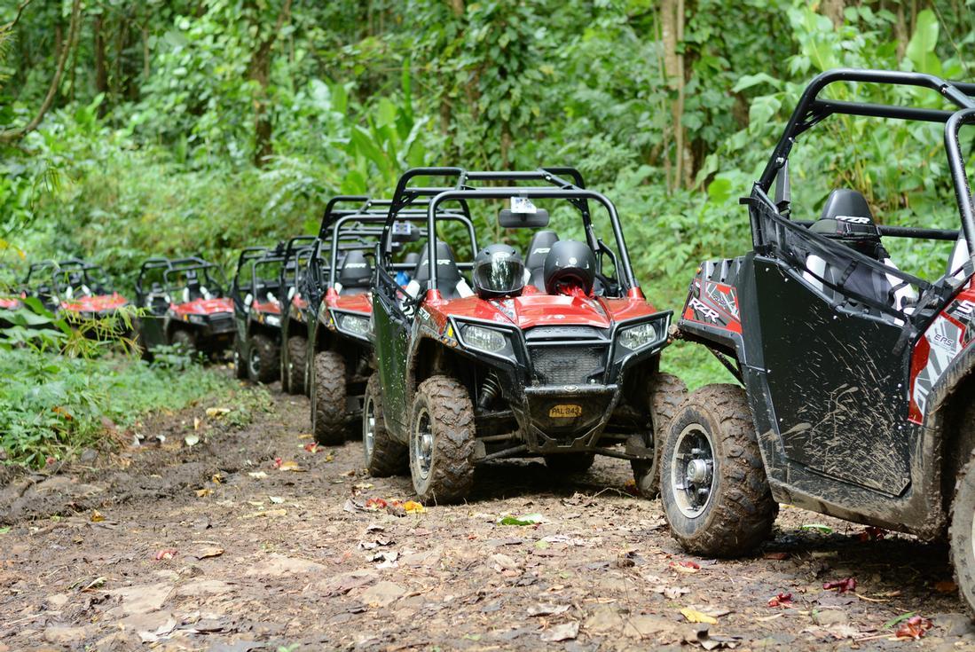Grenada Rainforest & Waterfall Dune Buggy Tour - Island Routes