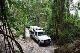 Local Tours At Sandals Barbados Resort In St Lawrence Gap Sandals - Barbados tours
