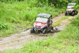 Antigua Buggy Tour